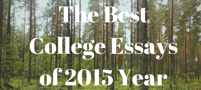 the best college essays of 2015 year